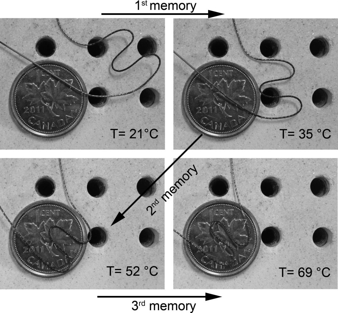 Shape memory microgripper